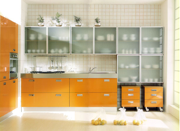 Glass Cabinet Frosted
