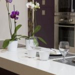 Silestone Worktops Edinburgh