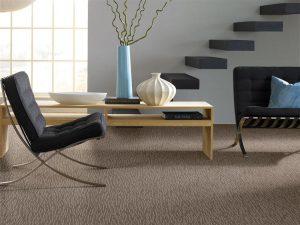 Carpet Ideas Tigressa Shay