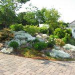Landscape Architecture Design Ideas with Paving